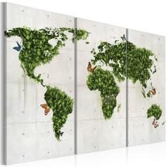 Artgeist Wandbild - Grünes Land der Schmetterlinge - Triptychon