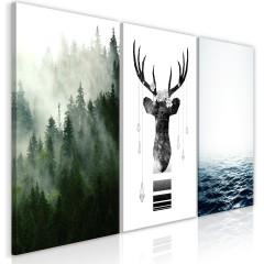 Artgeist Wandbild - Chilly Nature (Collection)