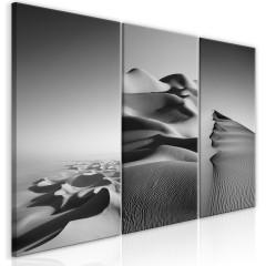 Artgeist Wandbild - Desert Landscape (Collection)