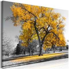 Artgeist Wandbild - Autumn in the Park (1 Part) Wide Gold