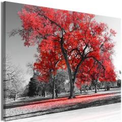 Artgeist Wandbild - Autumn in the Park (1 Part) Wide Red