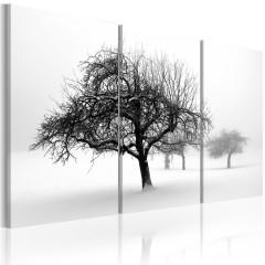 Artgeist Wandbild - Bäume in weißer Hülle