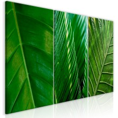 Artgeist Wandbild - Leaves (Collection)