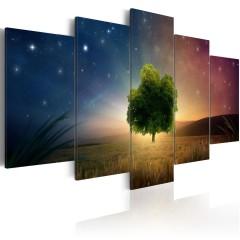Artgeist Wandbild - Starry Nights