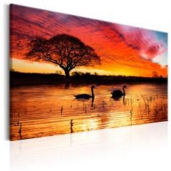 Artgeist Wandbild - Swan Lake