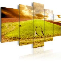 Artgeist Wandbild - Reifenspuren auf dem Feld