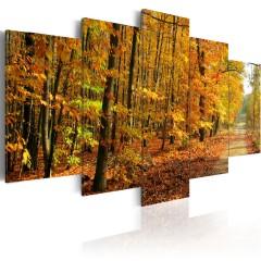 Artgeist Wandbild - Allee inmitten bunter Bäume