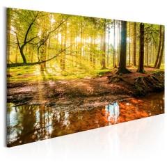 Artgeist Wandbild - Autumnal Reverie
