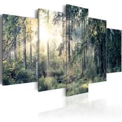 Artgeist Wandbild - Fairytale Landscape