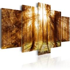 Artgeist Wandbild - Forest Illumination