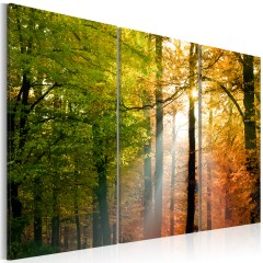 Artgeist Wandbild - Freundlicher Herbstwald
