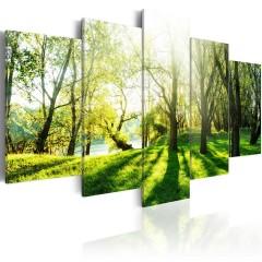 Artgeist Wandbild - Green Glade
