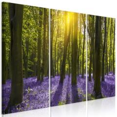 Artgeist Wandbild - Hyacinth Field (3 Parts)