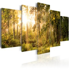 Artgeist Wandbild - Magic of Forest