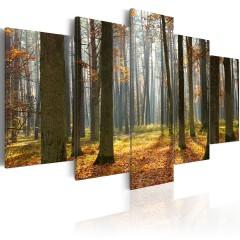 Artgeist Wandbild - Malerische Waldlandschaft