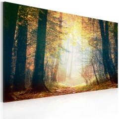 Artgeist Wandbild - Schönheit des Herbstes
