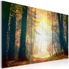 Artgeist Wandbild - Schönheit des Herbstes - Triptychon