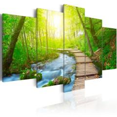 Artgeist Wandbild - Sunny Forest