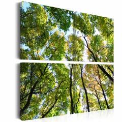Artgeist Wandbild - Treetops