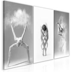 Artgeist Wandbild - Ballet (Collection)