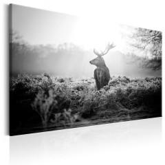 Artgeist Wandbild - Black and White Deer