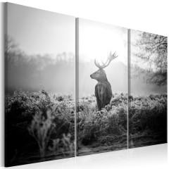 Artgeist Wandbild - Black and White Deer I