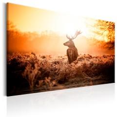 Artgeist Wandbild - Deer in the Sun