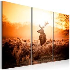 Artgeist Wandbild - Deer in the Sun I