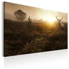 Artgeist Wandbild - Foggy Field
