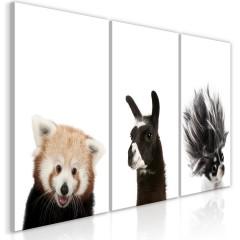 Artgeist Wandbild - Friendly Animals (Collection)