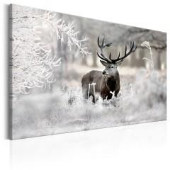 Artgeist Wandbild - Lonely Deer