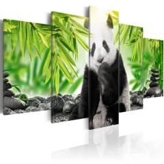 Artgeist Wandbild - Sweet Little Panda