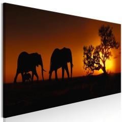 Artgeist Wandbild - Elephant Family (Orange)