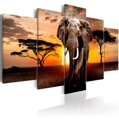 Artgeist Wandbild - Elephant Migration