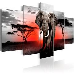 Artgeist Wandbild - Lonely Elephant
