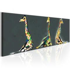 Artgeist Wandbild - Colourful Giraffes
