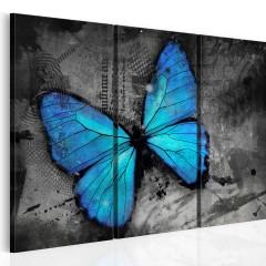 Artgeist Wandbild - Studie des Schmetterlings - Triptychon