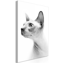 Artgeist Wandbild - Hairless Cat (1 Part) Vertical