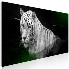 Artgeist Wandbild - Shining Tiger (1 Part) Green Narrow