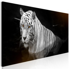 Artgeist Wandbild - Shining Tiger (1 Part) Orange Narrow