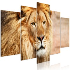 Artgeist Wandbild - The King of Beasts (5 Parts) Wide Orange
