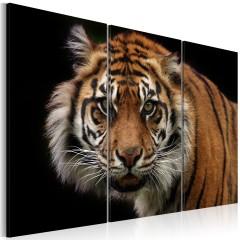 Artgeist Wandbild - Wilder Tiger