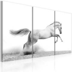 Artgeist Wandbild - Galoppierendes Pferd