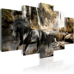 Artgeist Wandbild - Nebelschwaden über dem schwarem Pferd
