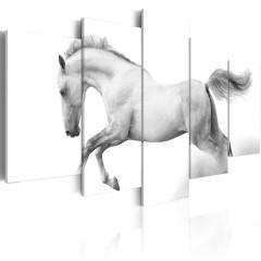 Artgeist Wandbild - Pferd - Leidenschaft und Freiheit