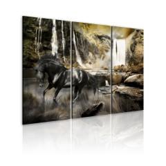 Artgeist Wandbild - Schwarzes Pferd und Wasserfall