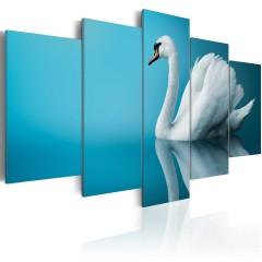 Artgeist Wandbild - Schwan am klaren Wasserspiegel