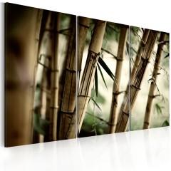 Artgeist Wandbild - Bambus in den Tropen