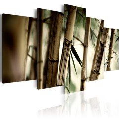 Artgeist Wandbild - Bambus in tropischen Wäldern