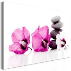 Artgeist Wandbild - Calm Mallow (1 Part) Pink